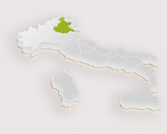 Wenecja Euganejska